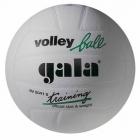 Volejbalový míč GALA Training White - BV 5041 S