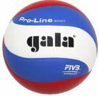 Volejbalový míč GALA Pro Line - BV 5591