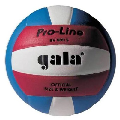Volejbalová lopta GALA Pro-Line BV 5011 S