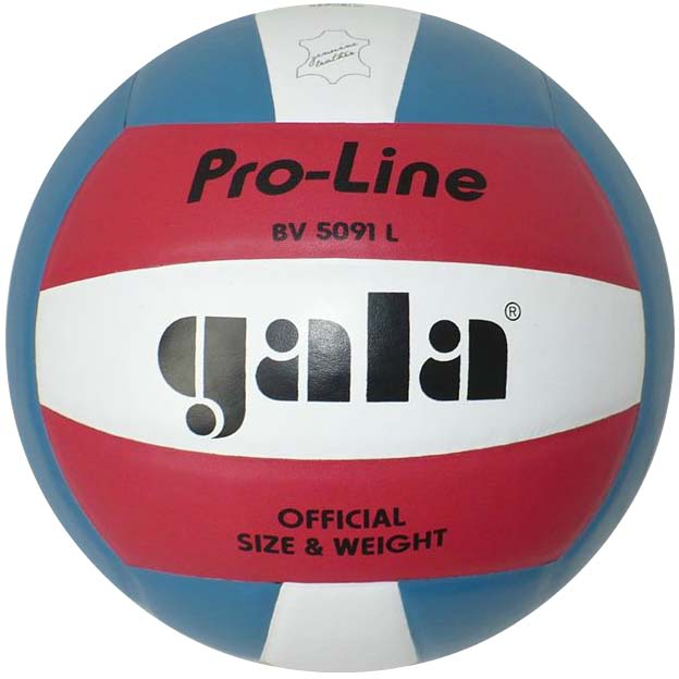 Volejbalový míč GALA Gala Official colour BV5091L